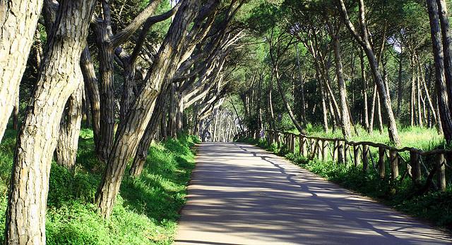 otoño en L'Escala_ruta senderismo